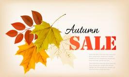Autumn Sales Banner Vector Foto de archivo libre de regalías
