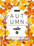 Autumn sales banners for web or print. Fall season sale and discounts banner. Colorful autumn leaves headline and sale Stock Photo