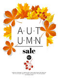Autumn sales banners for web or print. Fall season sale and discounts banner. Colorful autumn leaves headline and sale Stock Photography