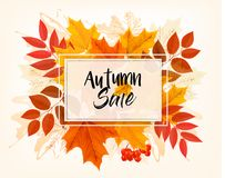 Autumn Sales Card With Colorful Leaves. vector illustration