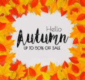 Autumn Sales Frame With Colorful Leaves. royalty free illustration