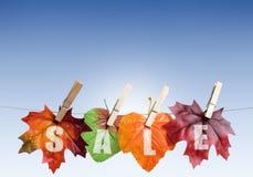 Autumn sales Stock Image