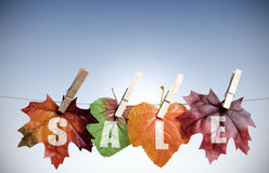 Autumn sales Stock Photos