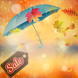 Autumn sales template. EPS 10 Stock Photo