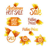 Autumn Sales Theme. Color Bright Vector Labels Set. Autumn Sales Theme Royalty Free Stock Images