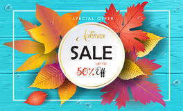 Autumn Sales turquoise wood banner. Autumn Sales banner, Sale Vector illustration. Fall sales season voucher with realistic drawing maple leaves, leaf fall, wood Royalty Free Stock Photo