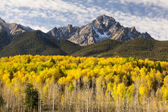 Autumn in the San Juans. Fall image of Mt. Sneffels in the San Juan Mountains of Southern Colorado Stock Photography