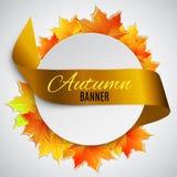 Autumn satin ribbon Royalty Free Stock Images