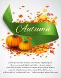 Autumn satin ribbon Royalty Free Stock Photos