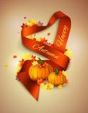 Autumn satin ribbon Stock Image