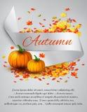 Autumn satin ribbon Royalty Free Stock Image