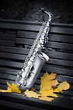 Autumn saxophone Royalty Free Stock Images