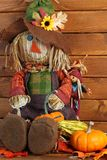 Autumn Scarecrow Stock Photo