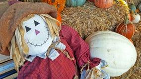Autumn scarecrow with pumpkins Royalty Free Stock Photos