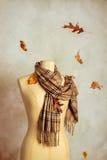 Autumn Scarf Royaltyfri Fotografi