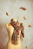 Autumn Scarf Royalty Free Stock Photography