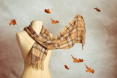 Autumn Scarf Stock Photography
