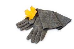 Autumn Scarves Royalty Free Stock Image