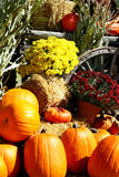Autumn Scene. A beautiful autumn scene that includes pumpkins, chrysanthemums, cornstalks, and an old wagon wheel Stock Images