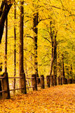 Autumn scene 2 Royalty Free Stock Photography
