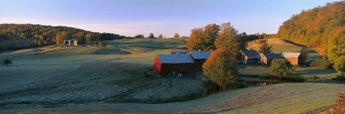 Autumn scene Royalty Free Stock Image