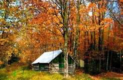 Autumn Scene Stock Images