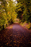 Autumn scene 4 Royalty Free Stock Photos