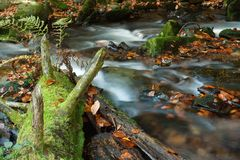 Autumn scene with cascading waterfall Stock Photos