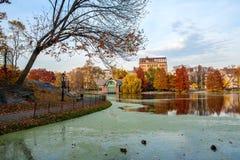Autumn Scene in Central Park. Royalty-vrije Stock Foto