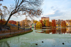 Autumn Scene in Central Park. Autumn Scene at the Harlem Meer found at the northern most end of NYC's Central Park. Featured here as well is a bared tree Royalty Free Stock Photo