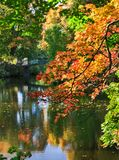 Autumn scene in a city Stock Photos
