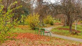 Autumn scene on city park Stock Photo