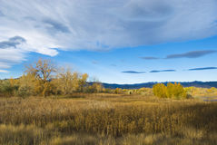 Autumn Scene on the Colorado Prairie stock photo