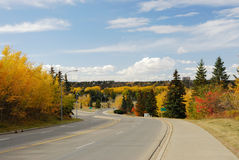 Autumn scene in edmonton Royalty Free Stock Image