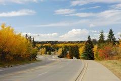 Autumn scene in edmonton royalty free stock image