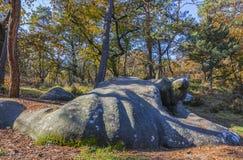 Autumn Scene en el bosque de Fontainebleau Fotografía de archivo