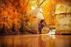 Autumn scene, fall, golden Autumn