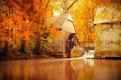 Autumn scene, fall, golden Autumn