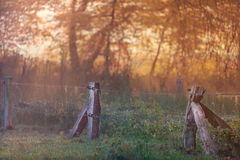 Autumn scene of a fenced meadow during sunset Stock Photography