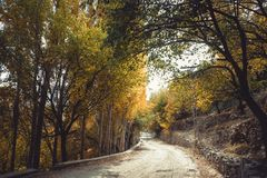 Autumn scene in Gilgit Baltistan, Pakistan. stock photos