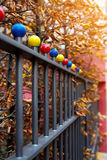 Autumn scene with iron fence Royalty Free Stock Image