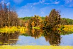 Autumn scene on lake Royalty Free Stock Photography