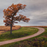Autumn Scene - 3. A lone building in the scenic valley in Southeastern Minnesota Stock Images