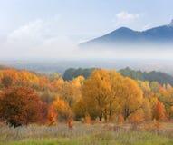 Autumn scene with mountains in fog Stock Photo