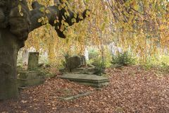 Autumn in the Old Cemetery, Southampton Common royalty free stock images