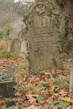 Autumn in the Old Cemetery, Southampton Common royalty free stock image