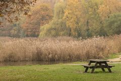 Autumn at the Ornamental Lake, Southampton Common royalty free stock photography