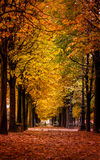 Autumn scene from a park in Paris, France. Stock Photography