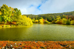 Autumn scene by the pond Royalty Free Stock Photography