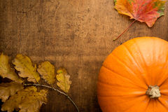 Autumn scene with pumpkin and colourful leaves. On wooden table Stock Photography